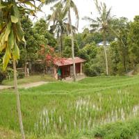 Een huisje tussen de rijstvelden op Bali.