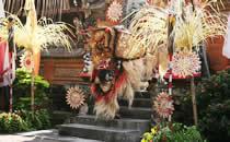 Kennismaken met de cultuur van Bali.